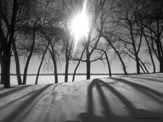 "Photo: David Mulford, ""Transcendence"""